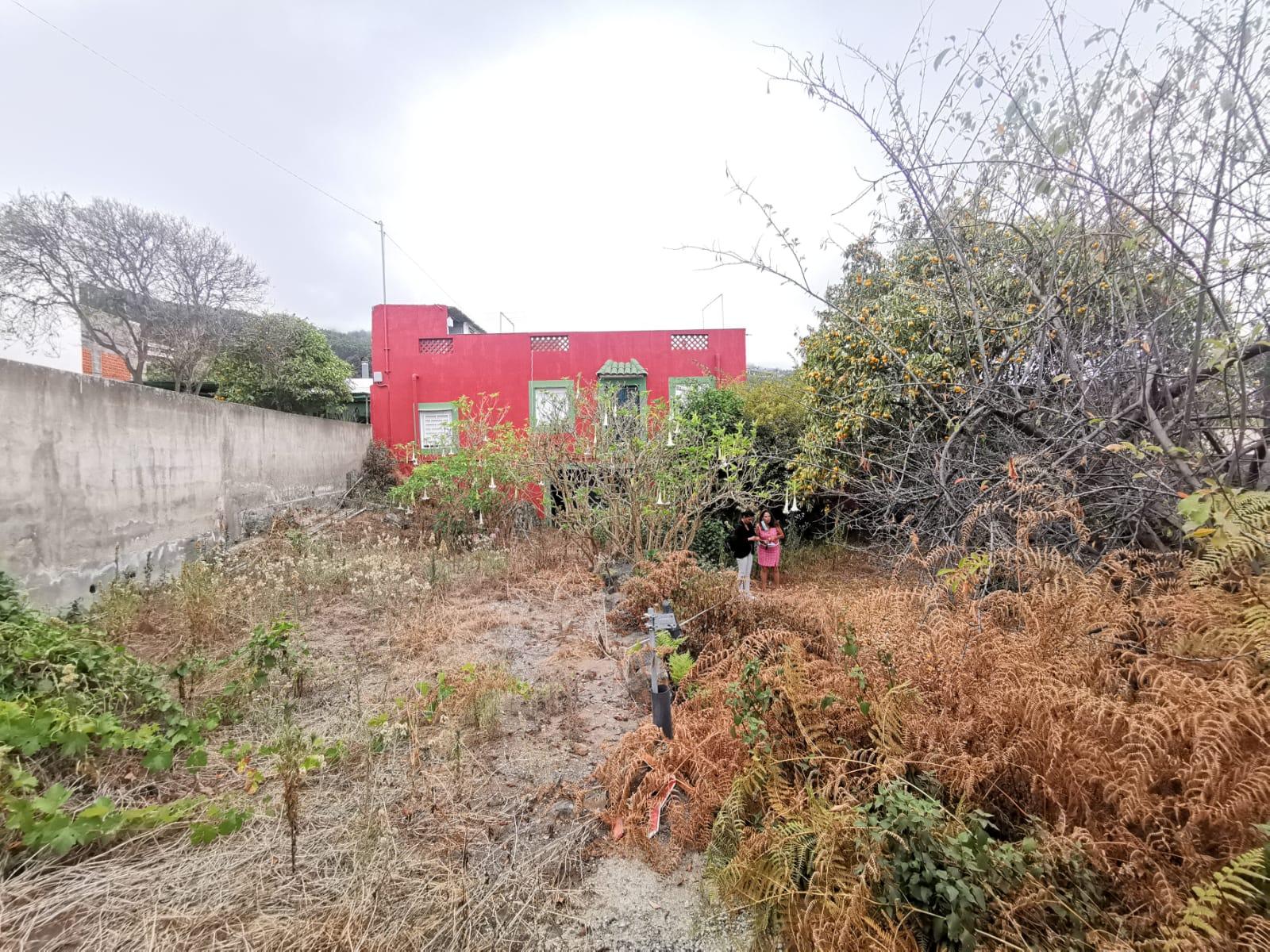 CHALET CON TERRENO Y CASAS DE 701 M2. JARDIN, GARAJE, ARBOLES FRUTALES.